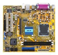 ASUSP5V800-MX