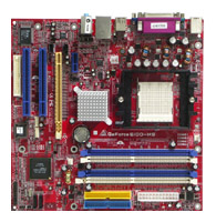BiostarGeForce 6100-M9