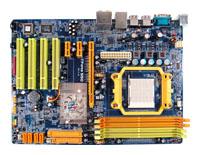BiostarTForce 550 SE Ver.5.x