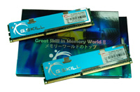 G.SKILLF3-10600CL9D-2GBPK