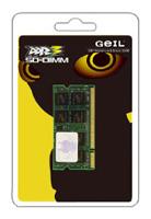 GeilGS31GB1333C9SC