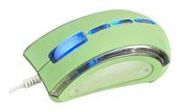 T'nBGUPPY JADE Green USB