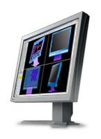 EizoFlexScan L985EX