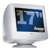 IiyamaVision Master 1404