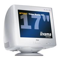 IiyamaVision Master 407