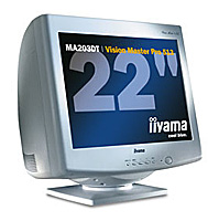 IiyamaVision Master Pro 513