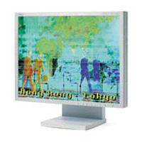 NECMultiSync LCD1980SXi