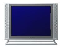SamsungSyncMaster 173MP
