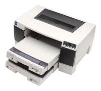 EpsonStylus Pro 5500